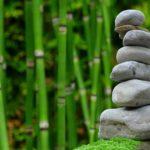 Śliczny ,a także zadbany ogród to zasługa wielu godzin spędzonych  w jego zaciszu w trakcie pielegnacji.